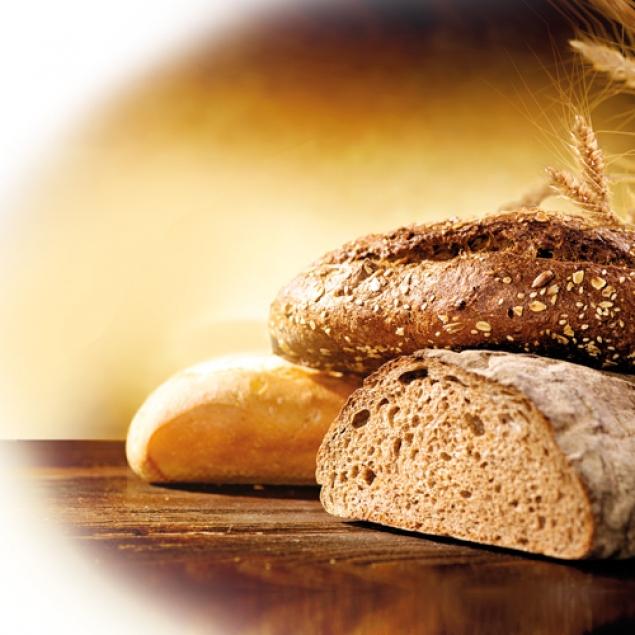 Frische produkte aus eigenem anbau gut kremsdorf for Kuchen ab werk verkauf